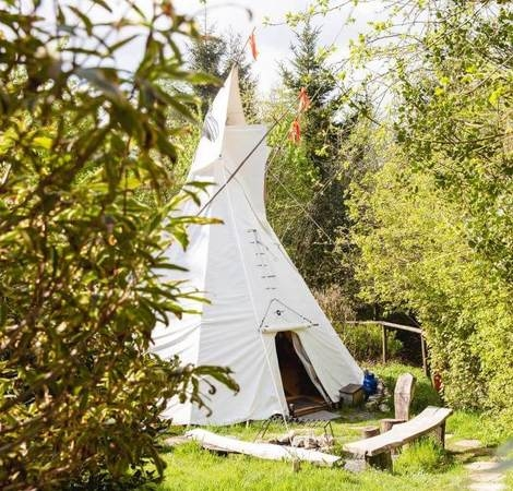 Traditional Tipis