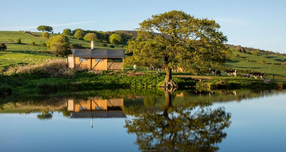 Glamping holidays near Cardiff, Glamorgan, South Wales - Under The Oak Glamping