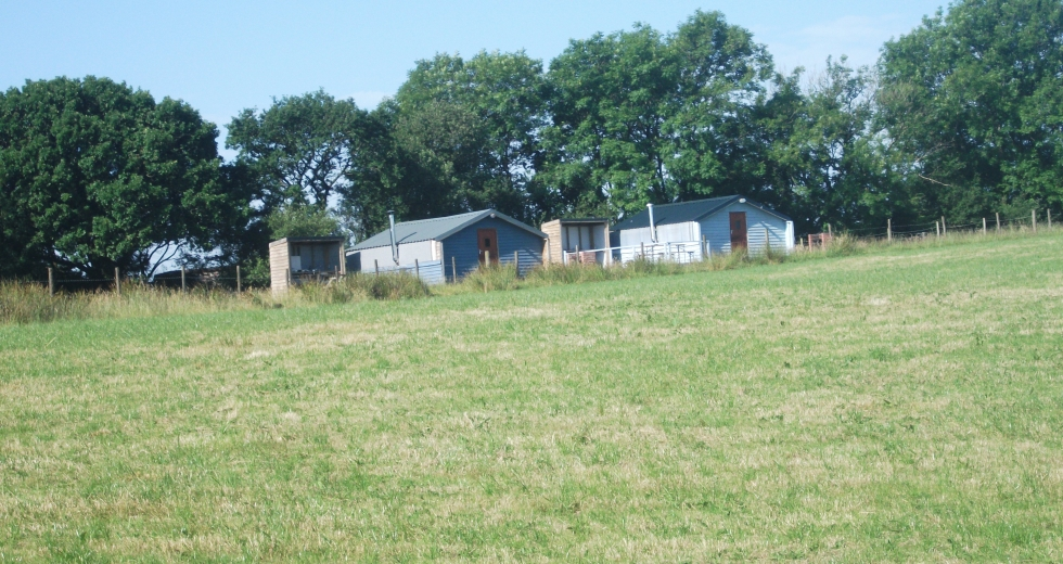Glamping holidays in Carmarthenshire, South Wales - Hill View Glamping