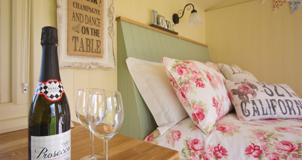 Glamping holidays in Hampshire, South East England - Two Hoots Campsite