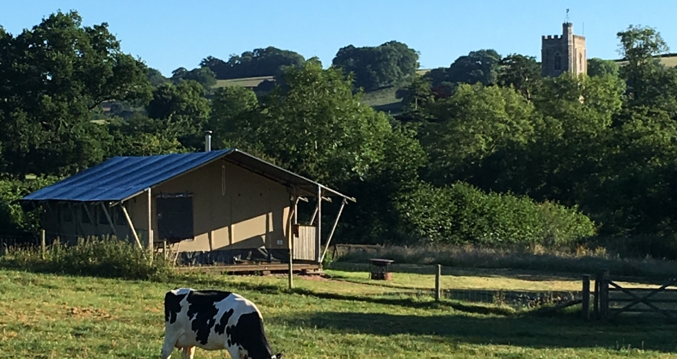 Glamping holidays in Devon, South West England - Aller Farm Glamping
