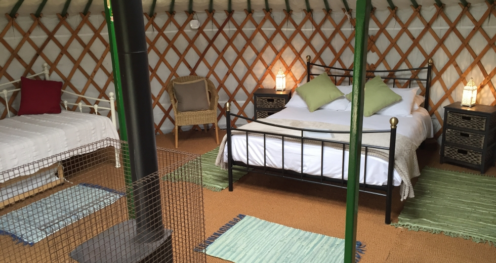 Glamping holidays in Dorset, South West England - Caalm Camp
