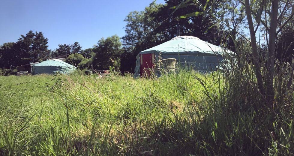 Glamping holidays in Somerset, South West England - Somerset Yurts