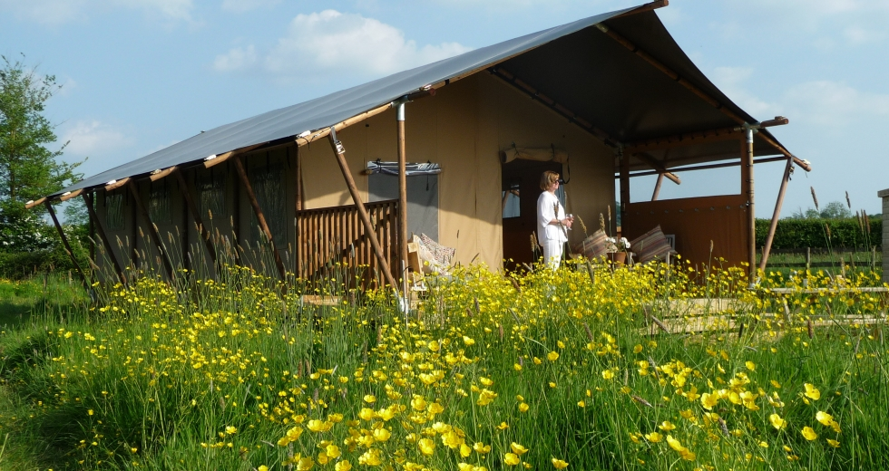 Glamping holidays in Somerset, South West England - Tall Trees Glamping