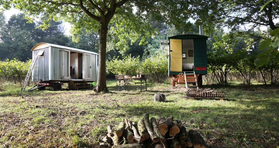Glamping holidays in Kent, South East England - Nut Plat Retreat