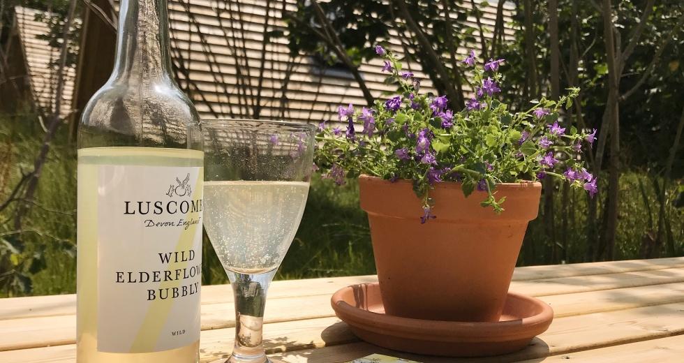 Glamping holidays in Devon, South West England - Orchard Organic Farm