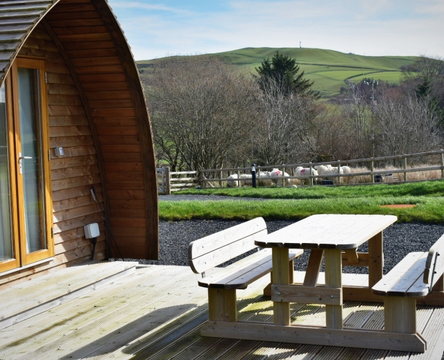 Glamping holidays in Powys, Mid Wales - Hafren Wigwams