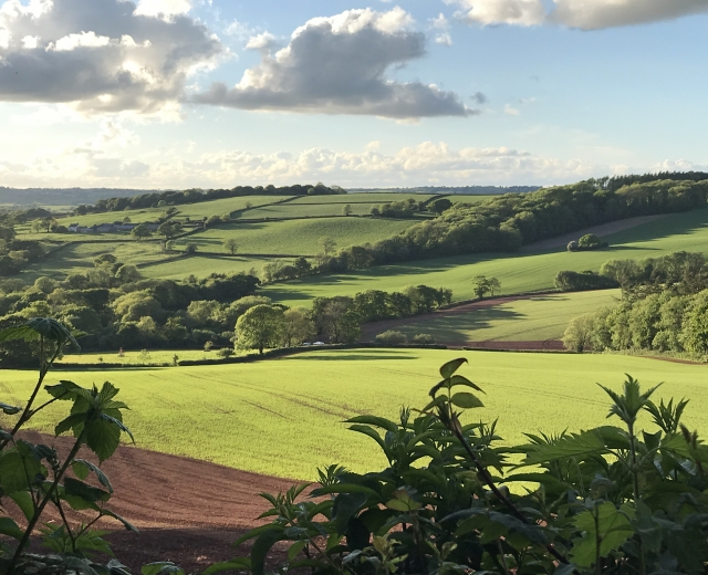 Glamping holidays in Devon, South West England - Just Us Retreats