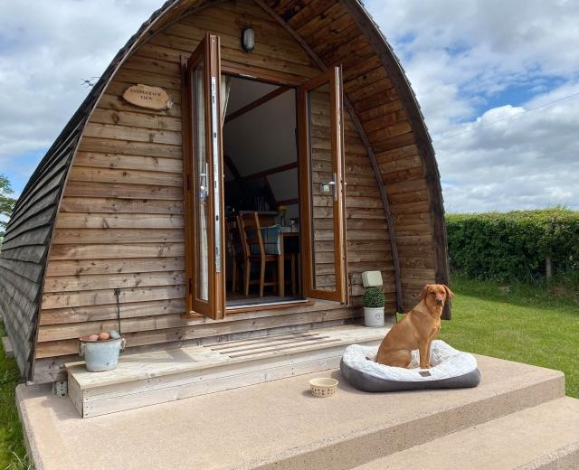 Glamping holidays near the Lake District, Cumbria, Northern England - Pasturewood Holidays