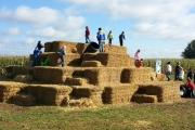 Glamping holidays in Buckinghamshire, South East England - Hill Farm Wigwams