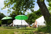 Glamping holidays in Devon, South West England - Little Orchard Alpacas