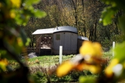 Glamping holidays in Gloucestershire, South West England - Resilient Woodlands Retreat