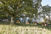 Glamping holidays in Gloucestershire, South West England - Whitemead Forest Park