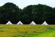 Glamping holidays in Kent, South East England - Wood View Farm Tenterden