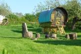 Glamping holidays in Somerset, South West England - Gypsy Caravan Breaks