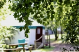 Glamping holidays in South Devon, South West England - Yurtcamp